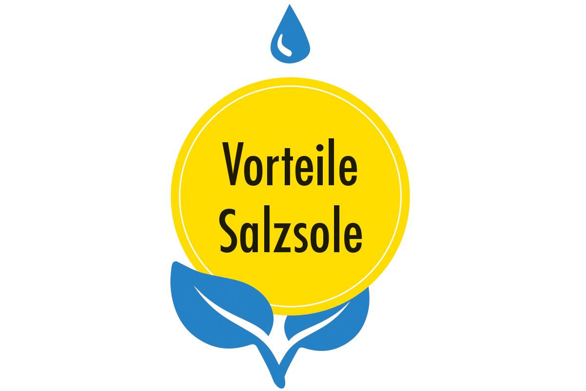 Vorteile-Salzsole