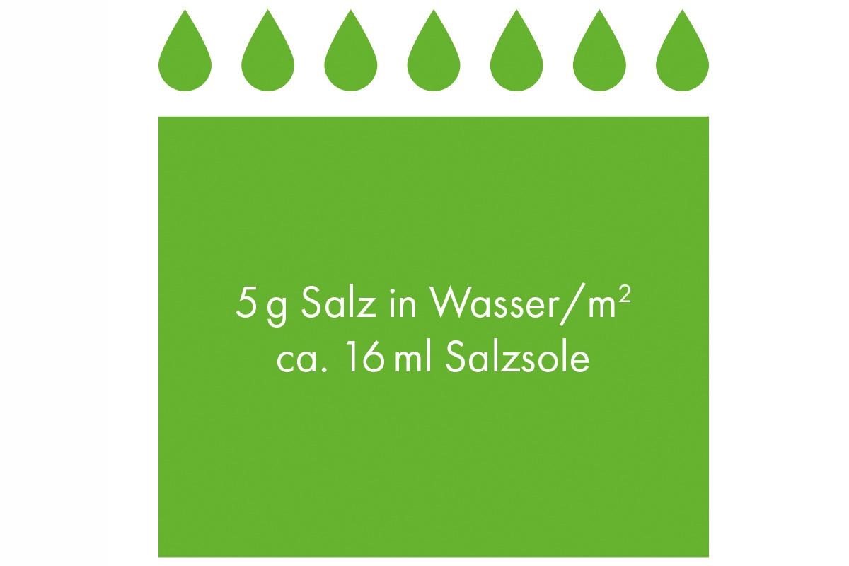 5g_Salzsole_auf_1m2